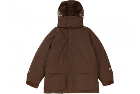 "Supreme GORE-TEX 700-Fill Down Parka ""Brown"""